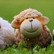 Загадки про животных в стихах